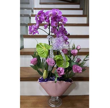 Orkide #0017