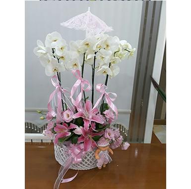 Orkide #0024