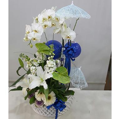 Orkide #0036