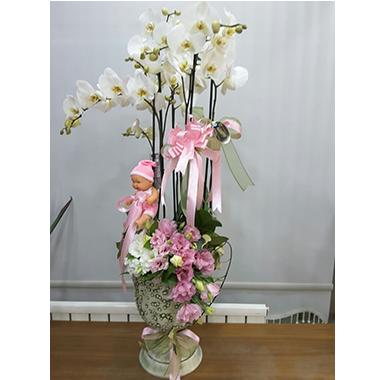 Orkide #004