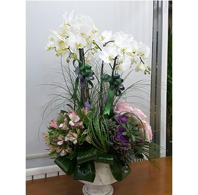 Orkide #0040