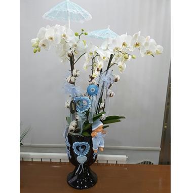 Orkide #009