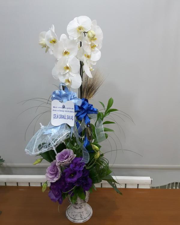 Premium Orkide Arajmanı
