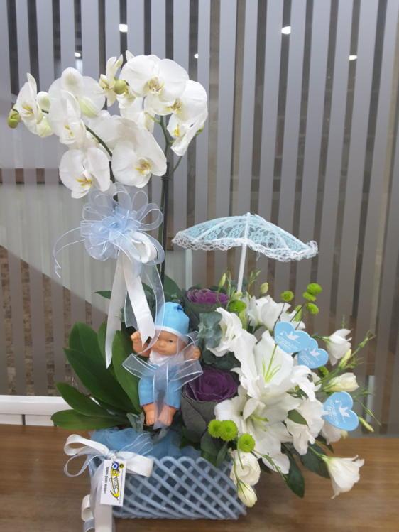 Hoşgeldin Bebek Beyaz orkide